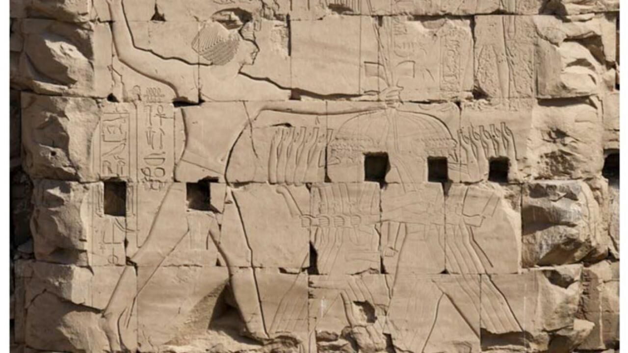 Epigraphic Program of the French-Egyptian Centre for the Study of the Temples of Karnak during the 2015 season