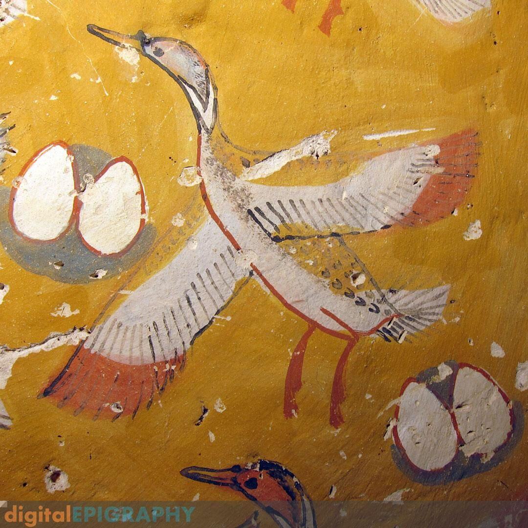 Painted detail from the ceiling of Theban Tomb 65 representing a flock of ducks with their nests