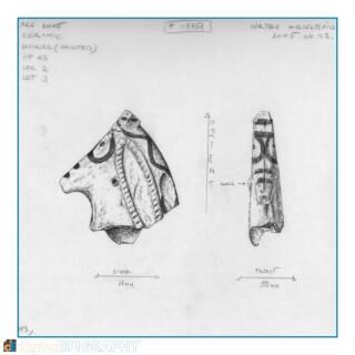 instagram-gallery/Pencil drawing of a painted ceramic horse head from the Abydos Settlement Site