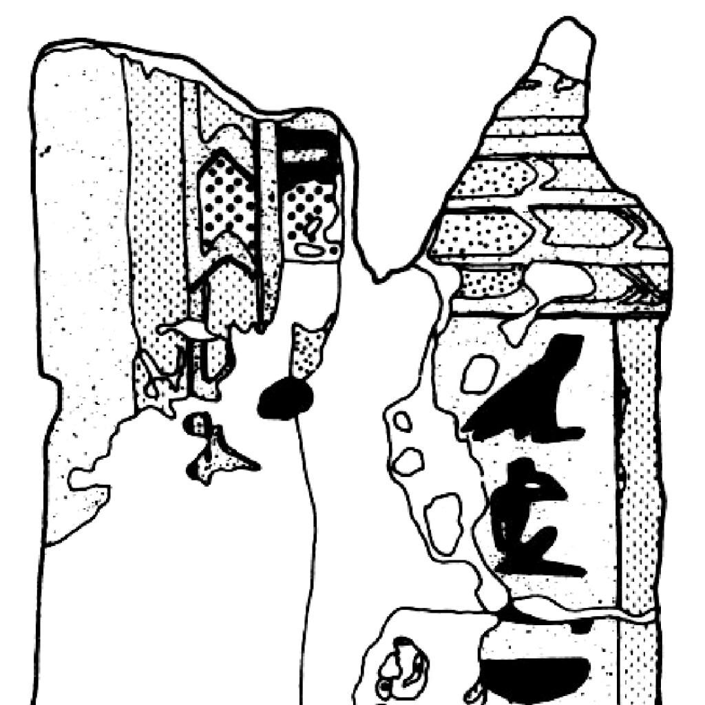 Tomb of Paenkhemenu (TT 68), Cartonnage fragments