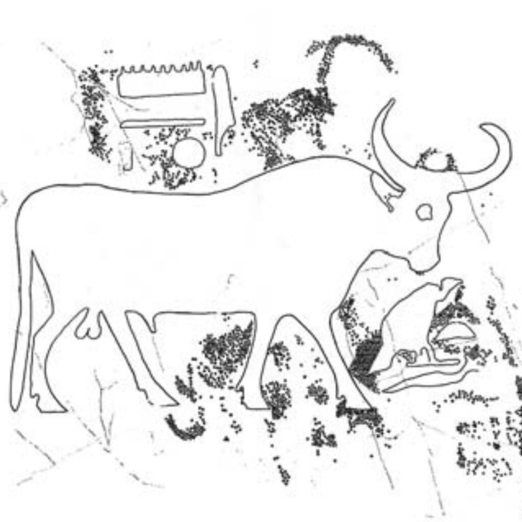Hagar el-Merwa, Bulls
